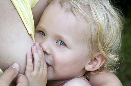 mini_allaitement-bambin